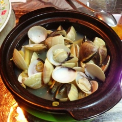 Clams in a salty broth